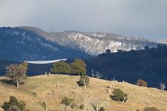 Snow saddle (Geoff Main) Tags: winter mountain snow hill australia act conder brindabellaranges canonef100400f4556lisusm canon7d