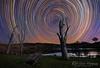 Star Trails @ Lostock NSW Australia (Kiall Frost) Tags: longexposure trees sky water night stars dam farm trails startrails lostock kiallfrost