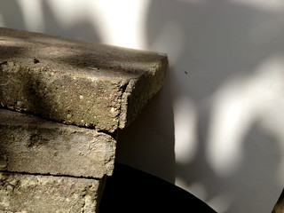Portrait of a Stack of Concrete Slabs