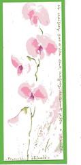 "POESIE ""Etre lent""  (Framboisine Berry) Tags: pink france flower green art fleur watercolor word poetry artist aquarelle chinese bretagne proverb morlaix mot artiste posie locqunol framboisineberry"