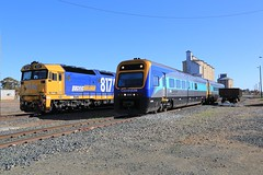 2013-08-18_0933-46-040 SP42 passing 8175 at Temora (gunzel412) Tags: geotagged australia newsouthwales aus temora geo:lat=3445001167 geo:lon=14753012333