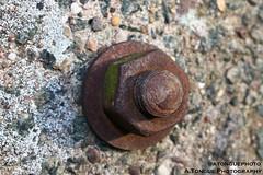 Nut & Bolt (A.Tongue Photography) Tags: rust rusty bolt nut nutbolt