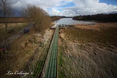 IMG_9175 (Yorkshire Pics) Tags: nature wildlife boardwalk mast northyorkshire westyorkshire rspb fairburn castleford fairburnings allertonbywater rspbreserve rspbnaturereserve rspbfairburnings fairburningsnaturereserve