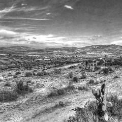 Pachuca hillside road