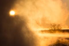 Niagara River Sunrise (josullivan.59) Tags: travel trees winter light wallpaper orange ontario canada abstract cold ice nature water weather fog sunrise landscape dawn niagarafalls day niagara minimalism lightanddark artisitic nicelight 3exp canon6d tamron150600