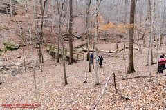 Mousetail Landing SP & Lady's Bluff - January 31, 2015 (mikerhicks) Tags: winter usa geotagged unitedstates hiking tennessee linden tennesseestateparks mousetaillandingstatepark sigma18250mmf3563dcmacrooshsm mousetailhistorical canoneos7dmkii ladysbluffsmallwildarea geo:lat=3569032167 geo:lon=8802041000
