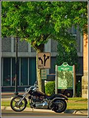 Harley Davidson by Jackson's First Baptist Church (sjb4photos) Tags: harleydavidsonmotorcycle alltypesoftransport 2012jacksoncruise