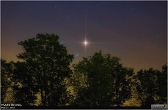 Mars Rising from Weatherly, Pennsylvania  May 25, 2016 (LeisurelyScientist.com) Tags: trees sky mars leaves silhouette canon stars glow pennsylvania space tripod science filter astrophotography planets astronomy solarsystem astronomer tiffen weatherly canon6d teamcanon tomwildoner leisurelyscientist leisurelyscientistcom