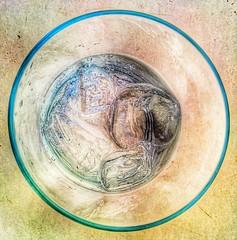 quizafresno_2015_2 (drpin) Tags: alcohol copas