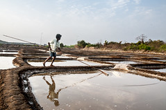 Uday at the Salt Pan in Panjim, Goa, India (Anoop Negi) Tags: india river photography photo goa salt tribal mining worker anoop uday panjim mandovi profession negi panaji ezee123