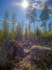 Rakka (MikeAncient) Tags: sky clouds forest suomi finland geotagged spring woods rocks stones kivi rakka hdr mets pilvet mntsl kevt taivas kivet tonemapped tonemap