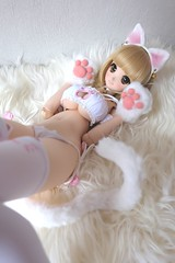 wk03 (OTTO BOY) Tags: dream dd dollfie volksdolls ddh06 dollfiedreamthailand