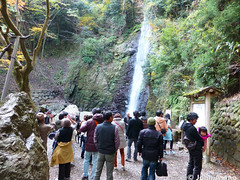 Yoro Falls Waterfall (Japan Australia) Tags: waterfall falls gifu yoro
