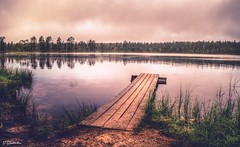 Lauhanvuori National Park (salas-3) Tags: suomi sterbotten nikon bridge beauty morning woods forest landscape water lake finland nationalpark