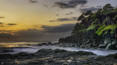 Cascading green (BAN - photography) Tags: cliff grass sunrise dawn sand rocks coolangatta snapperrocks d810 pandanustrees