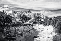 Castle in the Sky (danielacon15) Tags: travel bw usa water landscape utah nationalpark amazing interesting rocks natural earth canyon erosion formation fantasy bryce middle brycecanyon hoodoos