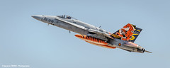 Spanish tiger (NTM 2016) (Ignacio Ferre) Tags: airplane nikon fighter aircraft military tiger zaragoza hornet f18 avin tigre nato otan tigermeet spanishairforce lezg mcdonnelldouglasef18am