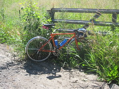 In the weeds at the end of pavement on Sauvie Island Road (Tysasi) Tags: bike permanent sauvieisland populaire randonneur brevet randonneuse 650b randonneuring kitbike cuthbertbinns bespokefopchariottm