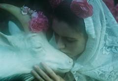 The Garden of Eden (laura makabresku) Tags: laura film 35mm photography goat fairy analogue tale myth makabresku