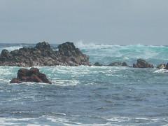 Playa (Santa Cruz de Tenerife) (Aurora Mayorga) Tags: rocks waves oleaje erosion santacruzdetenerife olas atlanticocean rocas geomorphology relieve ocanoatlntico erosin orografa physicalgeography geomorfologa vulcanismo rocavolcnica hidrology hidrologa geografafsica