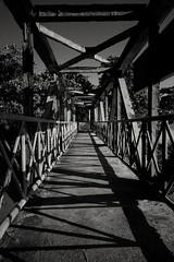 Little Foot Bridge (canaimaman) Tags: travel bridge blackandwhite monochrome river tropical