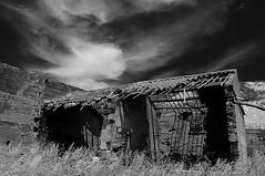 abbandonato, derelitto, desolato, abandoned, deserted, forlorn, desolate, lonely, derelict (claude05) Tags: sicily homestead flickrexplore