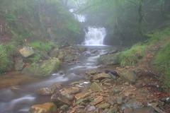 Parque natural de #Gorbeia #Orozko #DePaseoConLarri #Flickr -108 (Jose Asensio Larrinaga (Larri) Larri1276) Tags: 2016 parquenatural gorbeia naturaleza bizkaia orozko euskalherria basquecountry