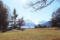 Isla (Juuliett) Tags: lake argentina lago heaven south paisaje lagos glaciar lanscape bariloche paraso patagoniaargentina sancarlosdebariloche surargentino paisajeglaciar