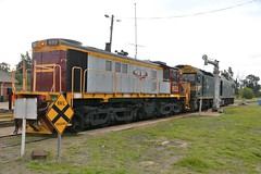 G526 & 852 (rob3802) Tags: outdoors diesel rail railway loco nsw locomotive gclass junee jrw diesellocomotive vechicle pacificnational dieselelectriclocomotive nswgr nswr 830class dl531 juneerailwayworkshops juneeroundhouse g526