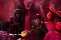 Barsana Nandgaon Lathmar Holi Low res (41 of 136) (Sanjukta Basu) Tags: holi festivalofcolour india lathmarholi barsana nandgaon radhakrishna colours
