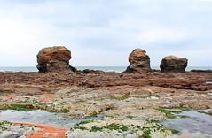 IMG_3475 (-Morgane-) Tags: ocean sea france nature landscape outdoors photography seaside sand rocks sion vende