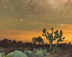 New Moon June 2016 #3 (MarcCooper_1950) Tags: sky skyscape stars landscape outside outdoors nikon scenery moody desert dramatic astrophotography nightsky hdr lightroom milkyway starlight longeposure d810 desertnight marccooper aurorahdr
