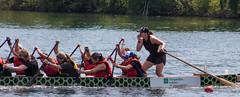 Teamwork (Jay:Dee) Tags: topw toronto photo walks topwdbrf16 dragon boat race festival