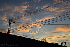 Ese Cielo (sooc) (Lex Arias / LeoAr Photography) Tags: sunset sky sunlight lines clouds atardecer lights luces nikon artistic venezuela fineart cielo barquisimeto lineas 2016 luzsolar nikond3100 leoarphotography lexarias iglexariasphotos