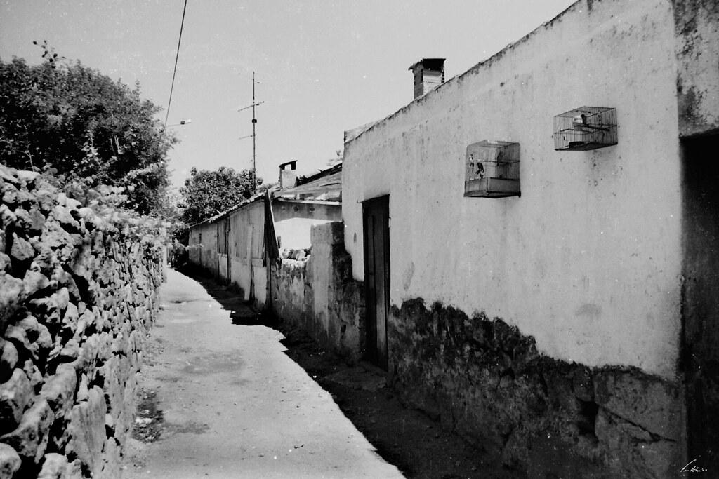 1600-canelha-longras (2)