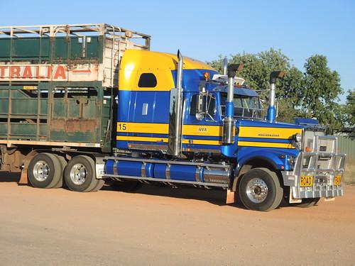 Western Star, of RoadTrains Australia. Sparkling in the Aussie sunshine at Fitzroy Crossing, WA (1)