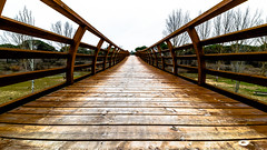 Puente de Madera (Juaberna) Tags: bridge architecture puente arquitectura nikon valladolid d610 14mm pesquera samyang