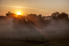 Fog from the River (Klaus Ficker --Landscape and Nature Photographer--) Tags: usa sun fog sunrise canon river kentucky serene frankfort kentuckyriver eos5dmarkii kentuckyphotography klausficker