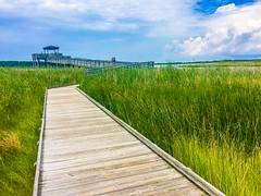 Wooden walkway through the marsh (bardo333) Tags: wood blue sky lighthouse grass clouds follow nagshead walkway bode marsh bodie obx woodenwalkwaythroughthemarsh