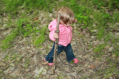 Love this pic. (Bluestep) Tags: ohio fun spring infant walkingstick playinginthewoods huntingmorels