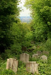 St Paul's Cathedral (Mr Moss) Tags: london view stpaulscathedral londonist nunheadcemetery