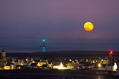 Under the moon light (Ronan Follic) Tags: