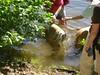 LakeWabanAug102008014