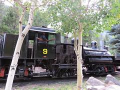 Engine, Engine # Nine (Patricia Henschen) Tags: railroad railway steam locomotive tender georgetownloop excursion narrowgauge steamlocomotive devilsgate coalcar georgetowncolorado georgetownlooprailroad railroadequipment guanellapassscenicbyway westsidelumberco