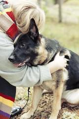 hugs (StudioStrawberri) Tags: love hug germanshepherd bestfriends bff