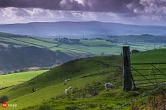 England Landscapes