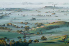Dawn sunshine and mist (Mukumbura) Tags: uk morning autumn trees light england mist fall beauty fog sunrise landscape outdoors dawn countryside october scenery shadows somerset hills tranquil daybreak gettyimages priddy somersetlevels peacefulscene mendiphills deerleap welcomeuk