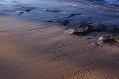 TRACKS (NO NYME) Tags: beach hawaii dusk northshore 2013