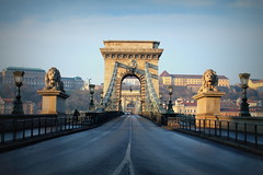 359/365 - 25/12/2013 (oana-emilia) Tags: bridge statue architecture europe hungary budapest lion chainbridge day359 shuttersisters shuttersister day359365 3652013 365the2013edition 25dec13