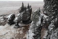 Hopewell rocks (mimu_13) Tags: canada newbrunswick nouveaubrunswick neige 1000 nx hopewellrocks nx1000 samsungnx1000